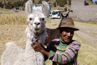 Peruvian farmer and his llama